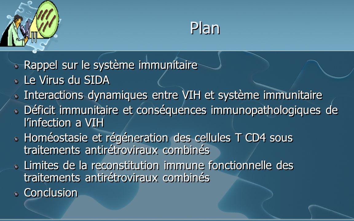 Plan Rappel sur le système immunitaire Le Virus du SIDA