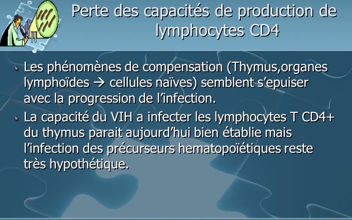 Perte des capacités de production de lymphocytes CD4