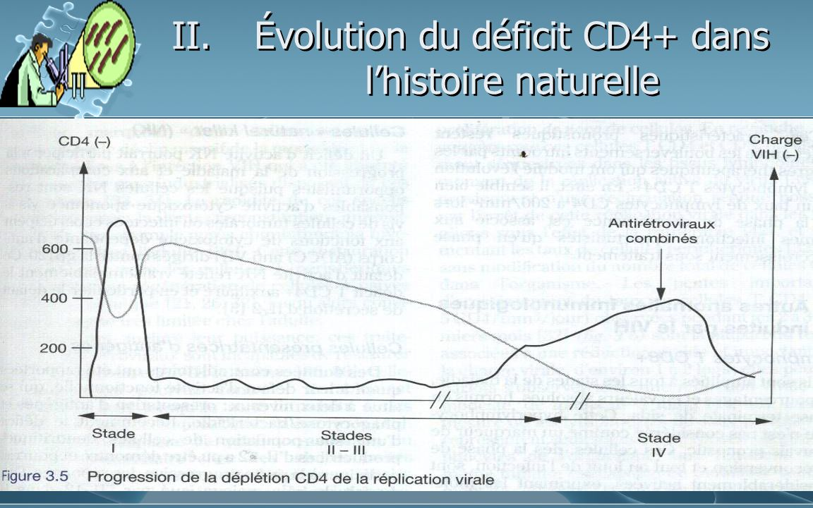 Évolution du déficit CD4+ dans l'histoire naturelle
