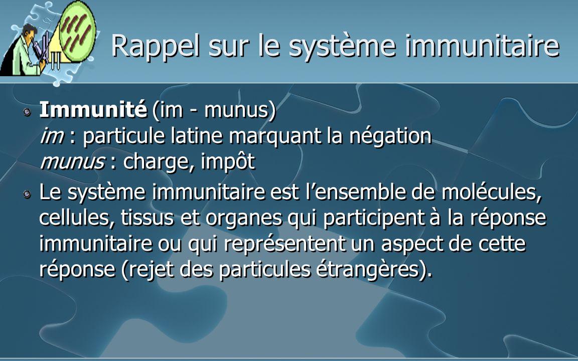 Rappel sur le système immunitaire