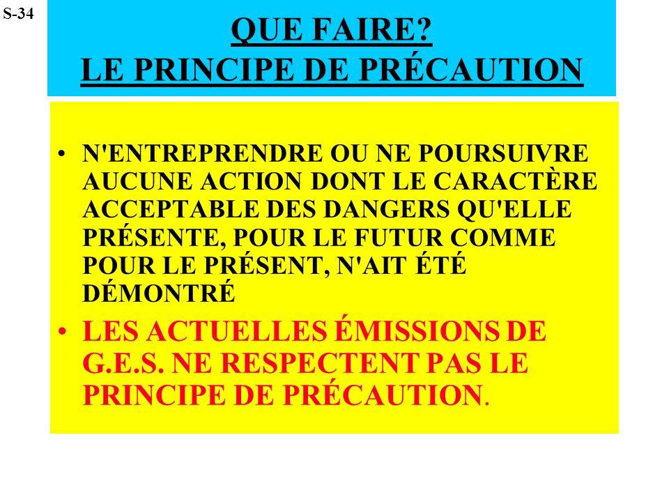QUE FAIRE LE PRINCIPE DE PRÉCAUTION