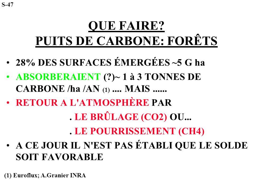 QUE FAIRE PUITS DE CARBONE: FORÊTS