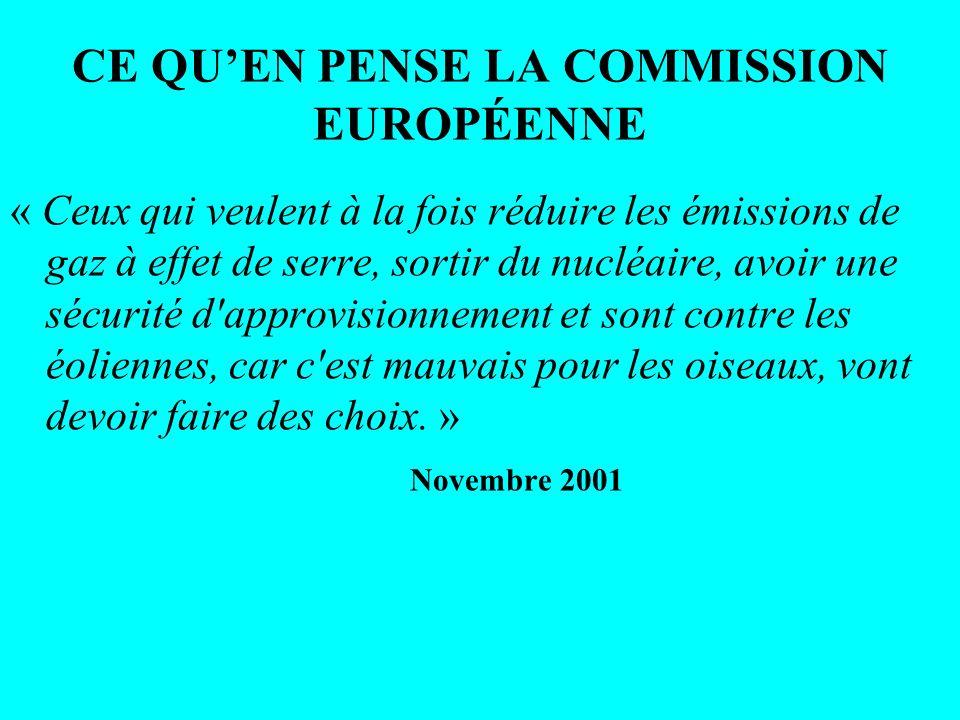 CE QU'EN PENSE LA COMMISSION EUROPÉENNE