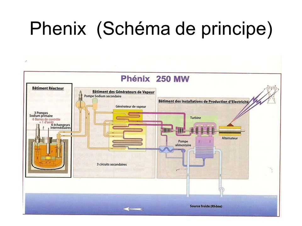 Phenix (Schéma de principe)