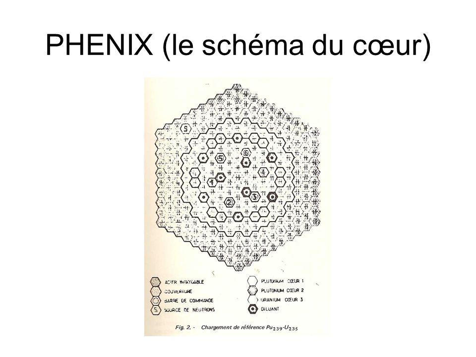 PHENIX (le schéma du cœur)