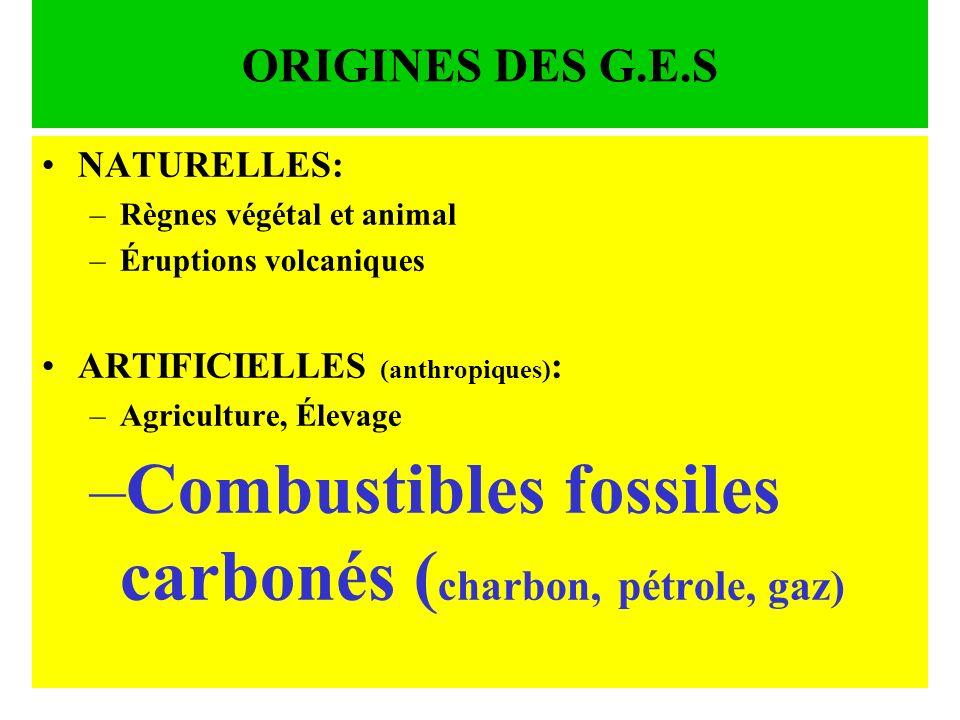 Combustibles fossiles carbonés (charbon, pétrole, gaz)