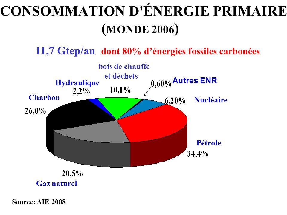 CONSOMMATION D ÉNERGIE PRIMAIRE (MONDE 2006)