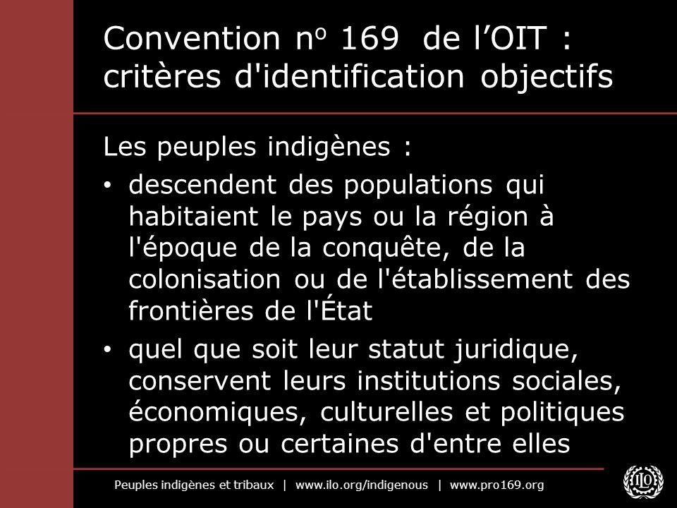 Convention no 169 de l'OIT : critères d identification objectifs