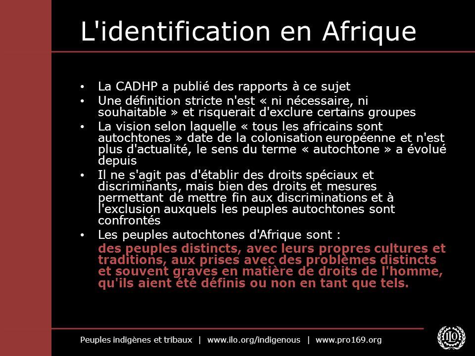 L identification en Afrique