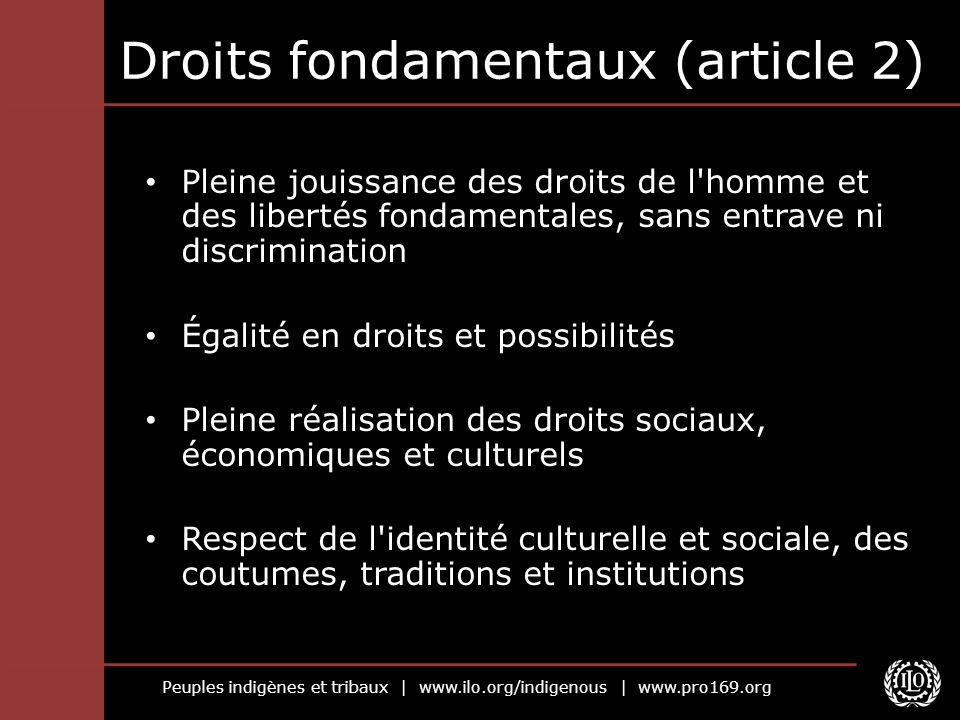 Droits fondamentaux (article 2)