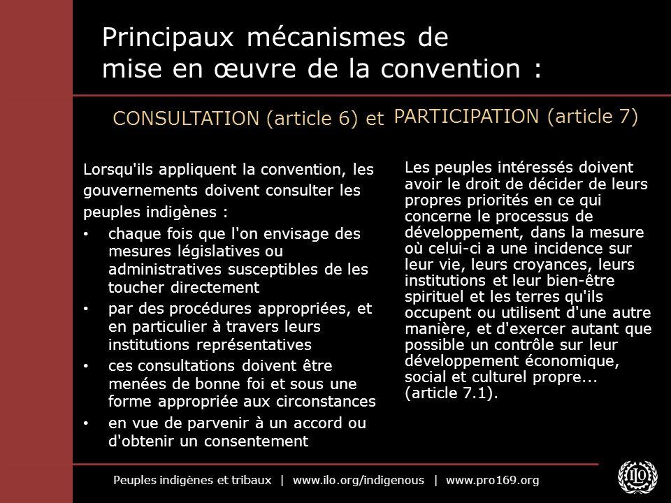 Principaux mécanismes de mise en œuvre de la convention :