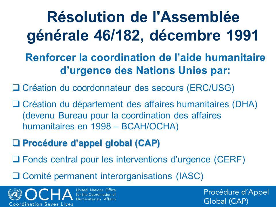 Résolution de l Assemblée générale 46/182, décembre 1991