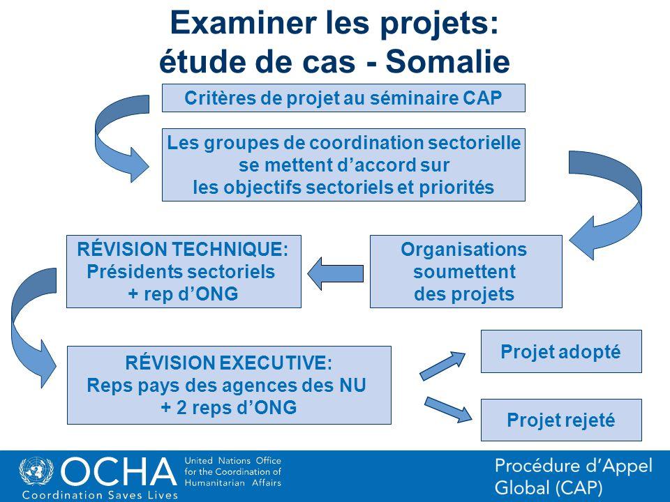 Examiner les projets: étude de cas - Somalie