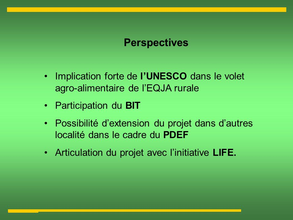 Perspectives Implication forte de l'UNESCO dans le volet agro-alimentaire de l'EQJA rurale. Participation du BIT.