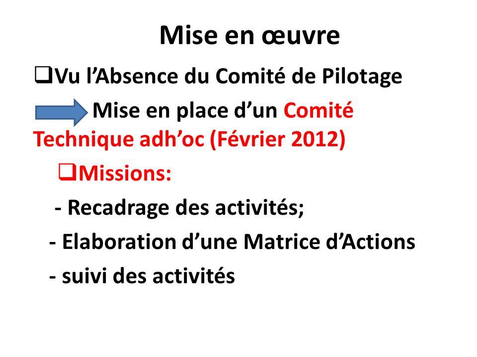 Mise en œuvre Vu l'Absence du Comité de Pilotage