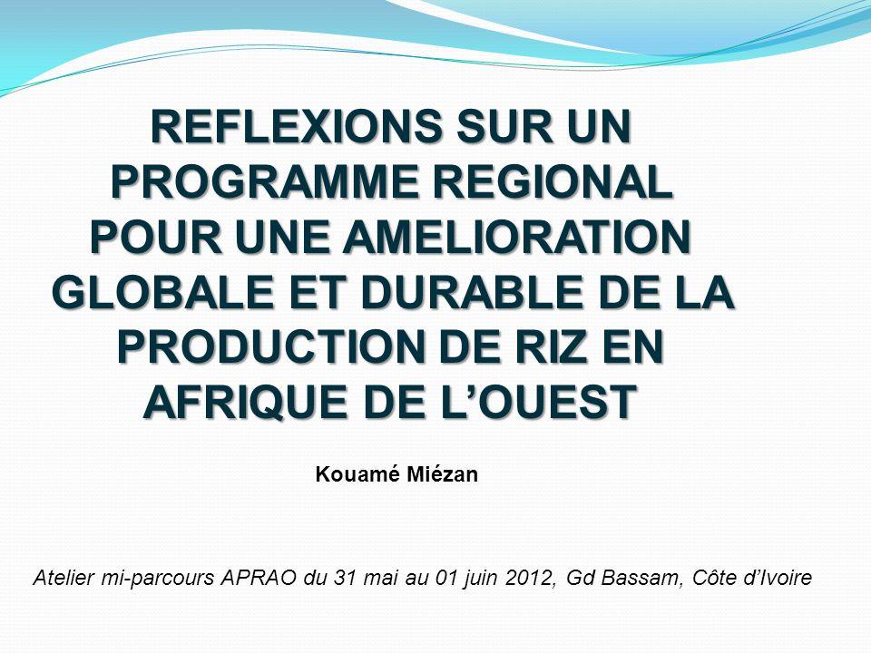 REFLEXIONS SUR UN PROGRAMME REGIONAL POUR UNE AMELIORATION GLOBALE ET DURABLE DE LA PRODUCTION DE RIZ EN AFRIQUE DE L'OUEST