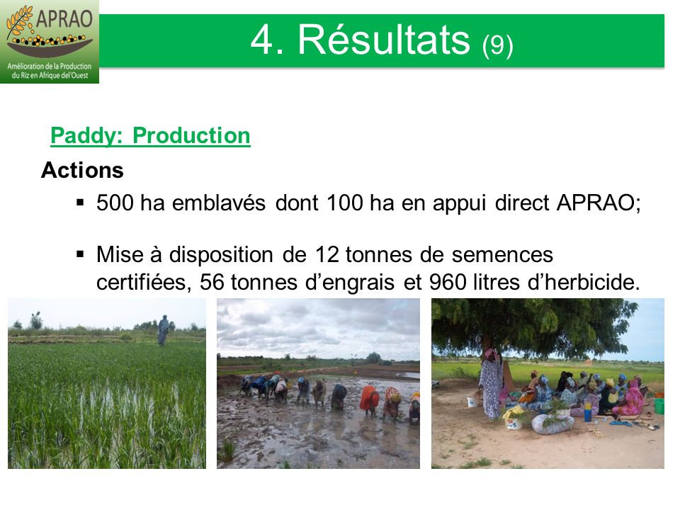 4. Résultats (9) Paddy: Production Actions