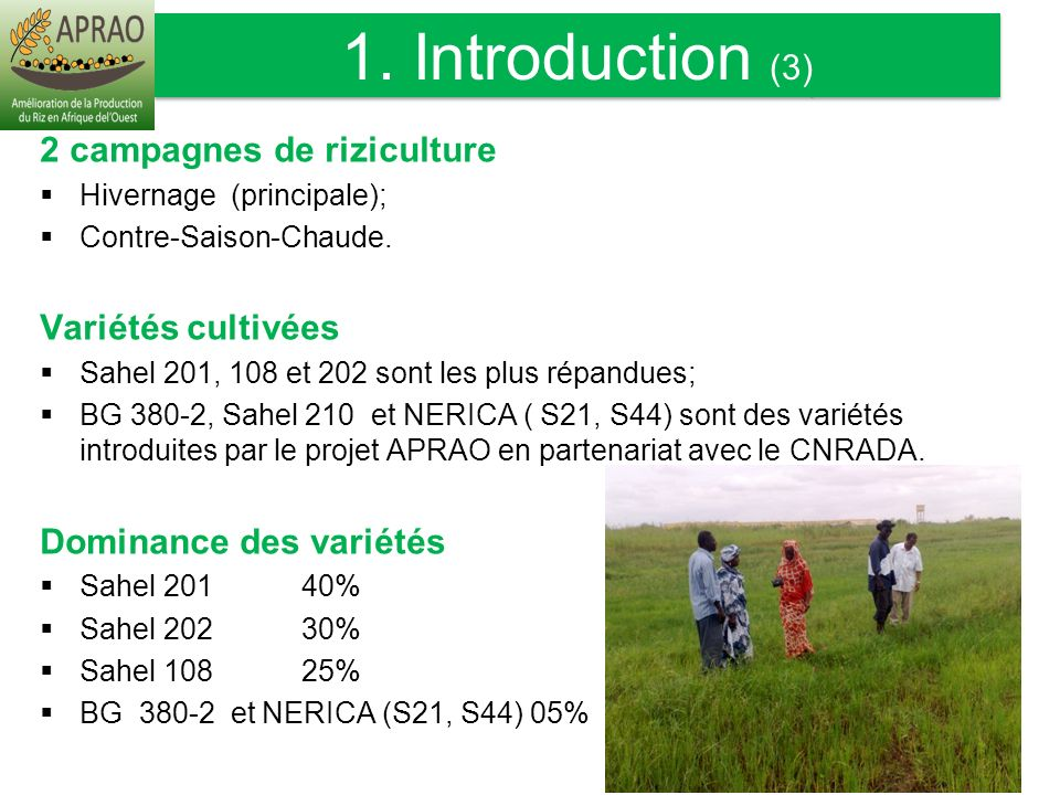 1. Introduction (3) INTRODUCTION suite) 2 campagnes de riziculture