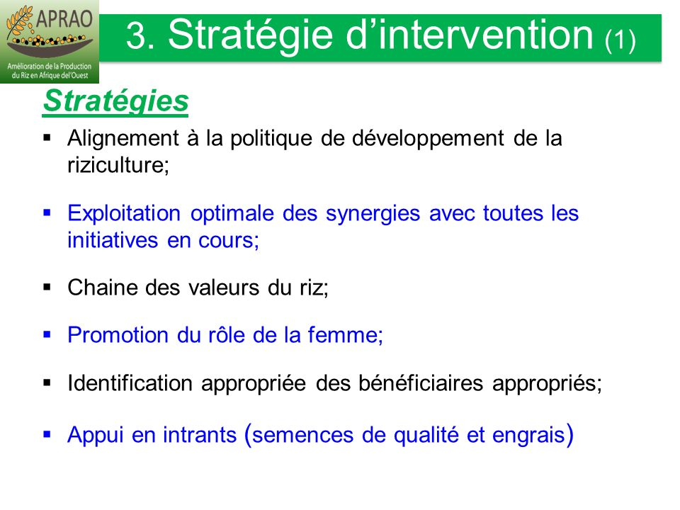 3. Stratégie d'intervention (1)