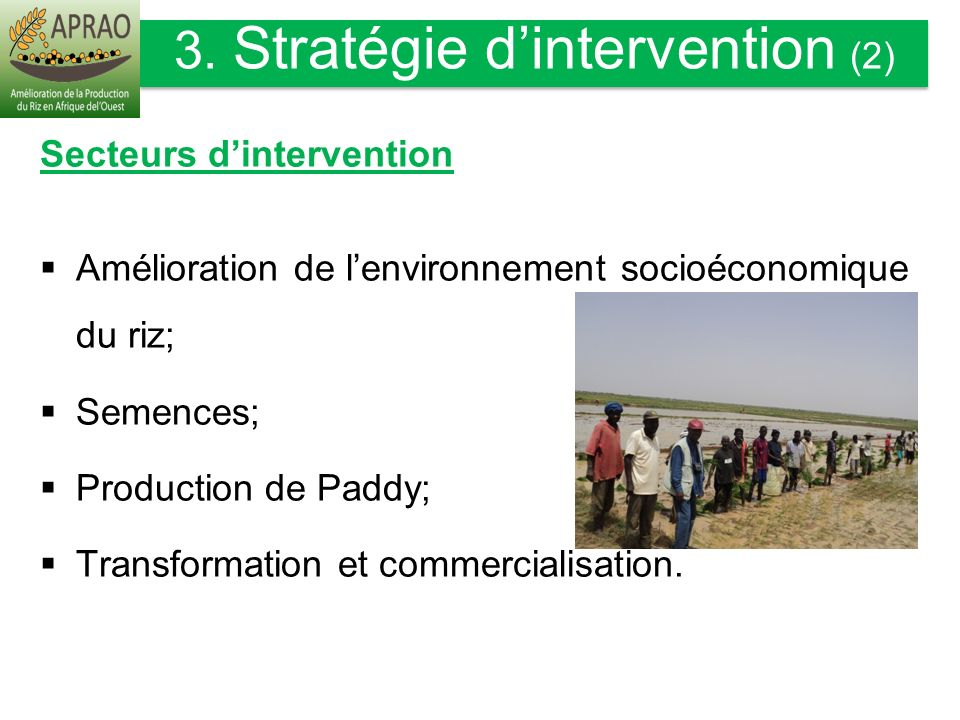 3. Stratégie d'intervention (2)