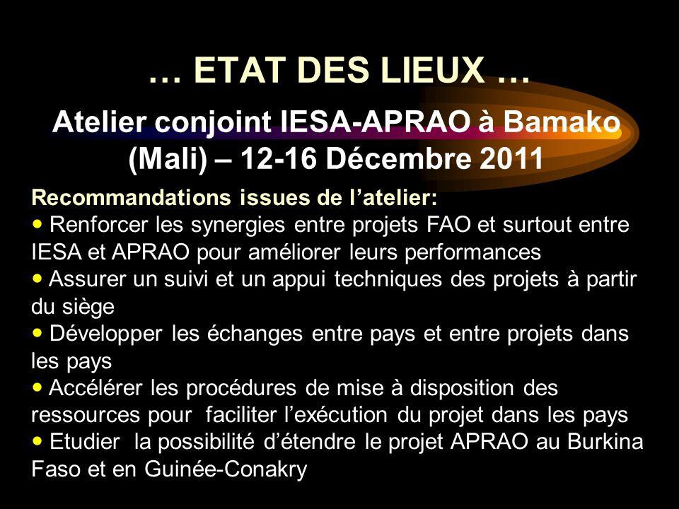 Atelier conjoint IESA-APRAO à Bamako (Mali) – 12-16 Décembre 2011