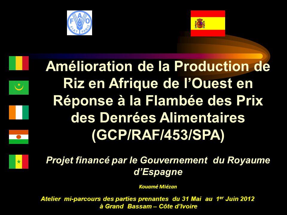 Amélioration de la Production de Riz en Afrique de l'Ouest en Réponse à la Flambée des Prix des Denrées Alimentaires