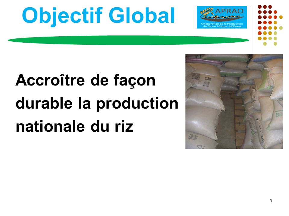 Objectif Global Accroître de façon durable la production nationale du riz