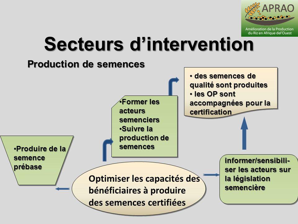 Secteurs d'intervention Production de semences