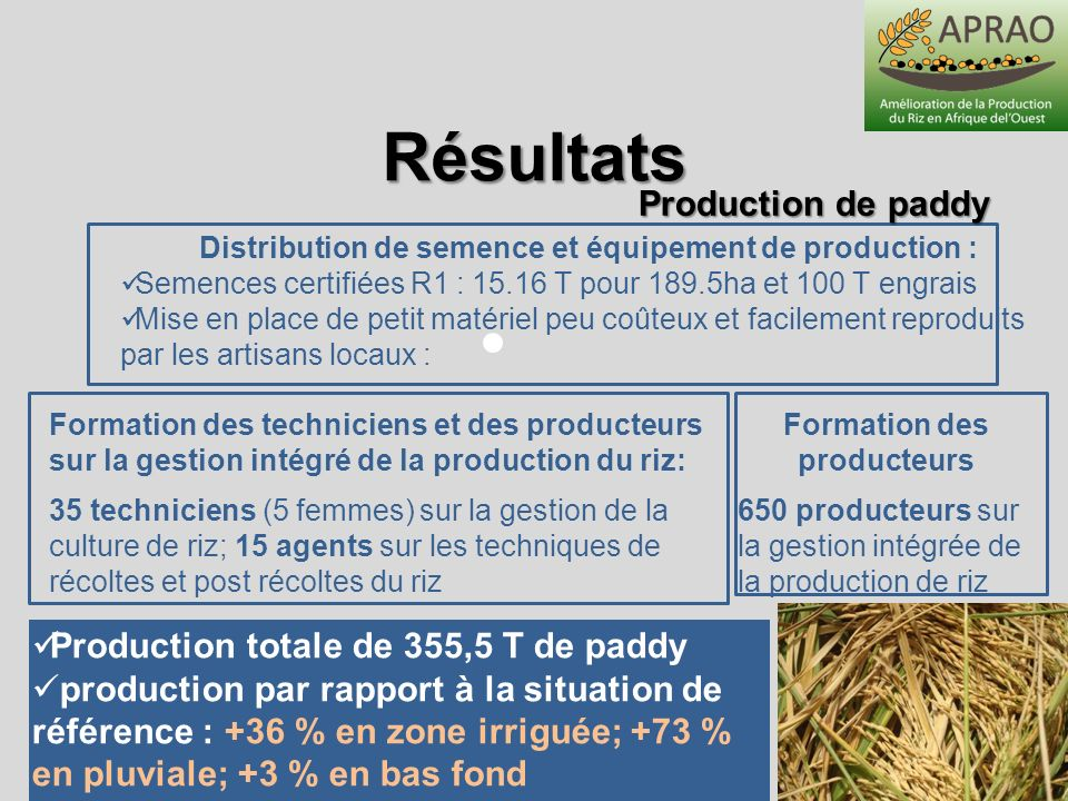Résultats Production de paddy Production totale de 355,5 T de paddy