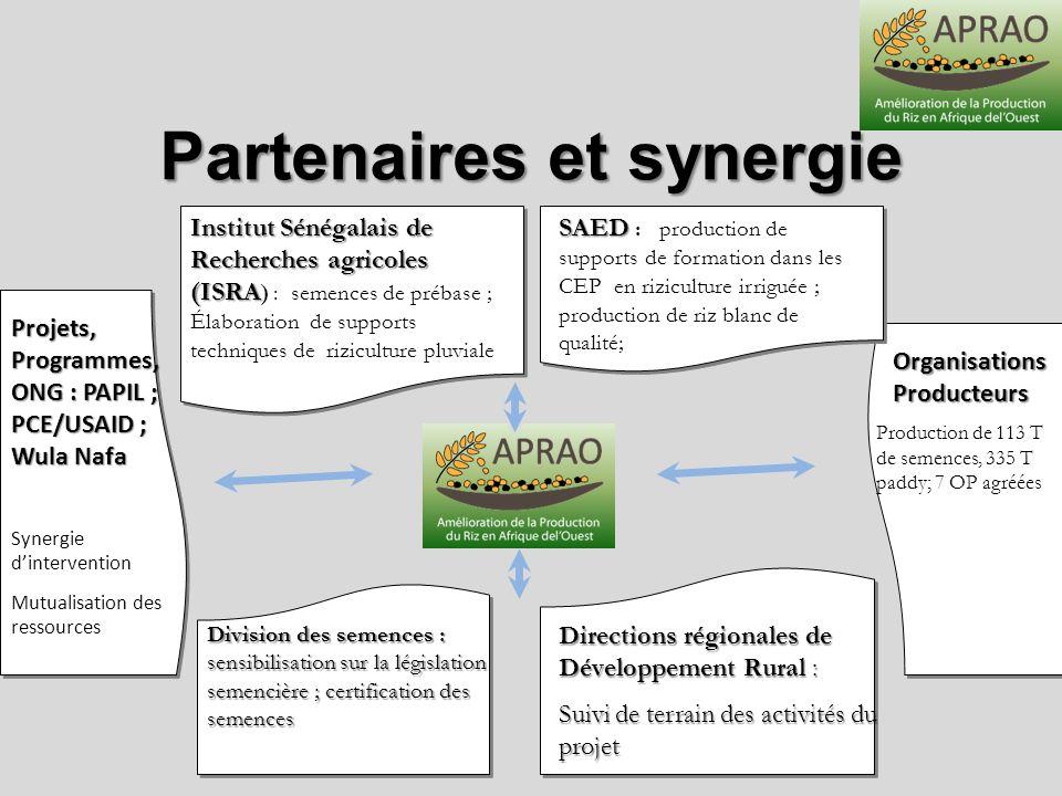 Partenaires et synergie