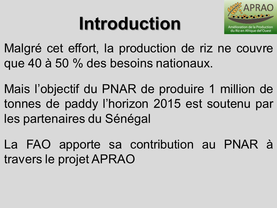 IntroductionMalgré cet effort, la production de riz ne couvre que 40 à 50 % des besoins nationaux.