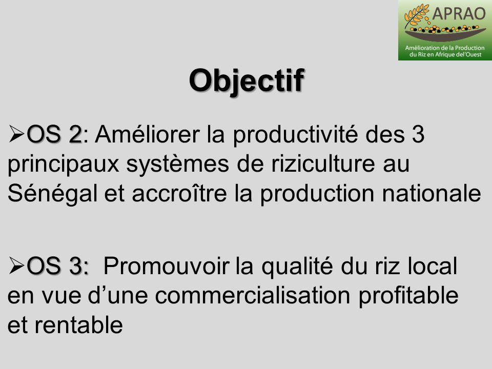 ObjectifOS 2: Améliorer la productivité des 3 principaux systèmes de riziculture au Sénégal et accroître la production nationale.