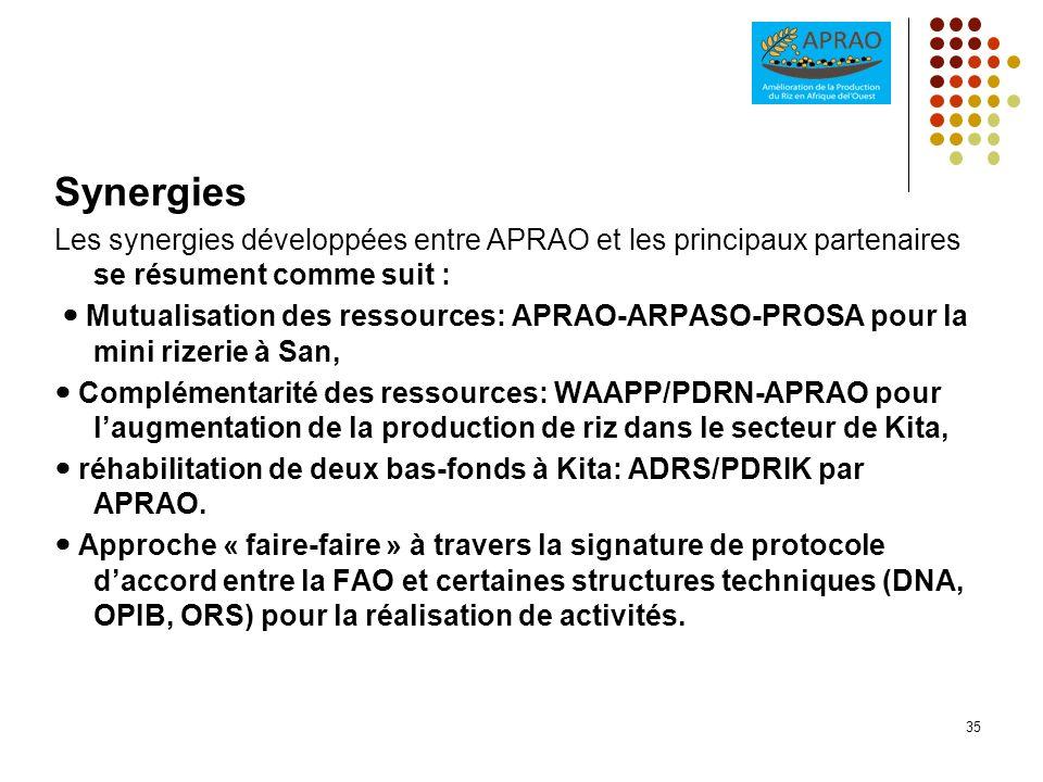 SynergiesLes synergies développées entre APRAO et les principaux partenaires se résument comme suit :