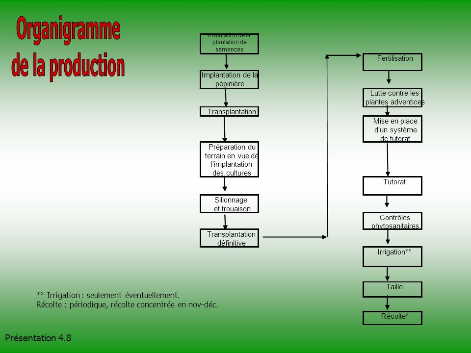 Organigramme de la production