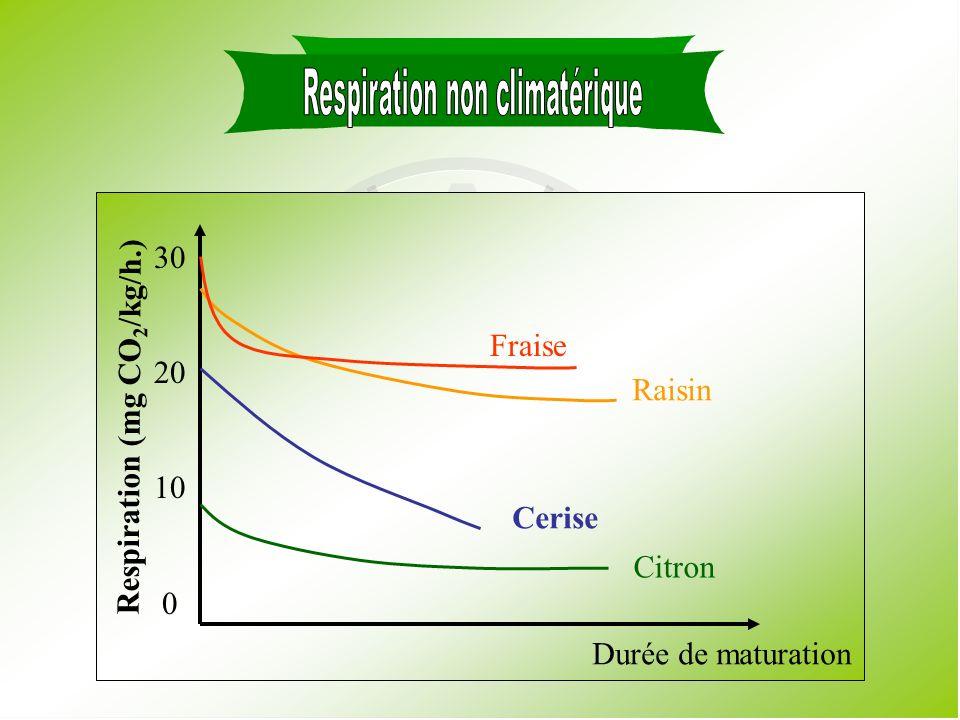 Respiration non climatérique