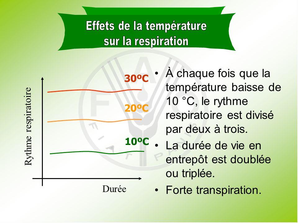 Effets de la température