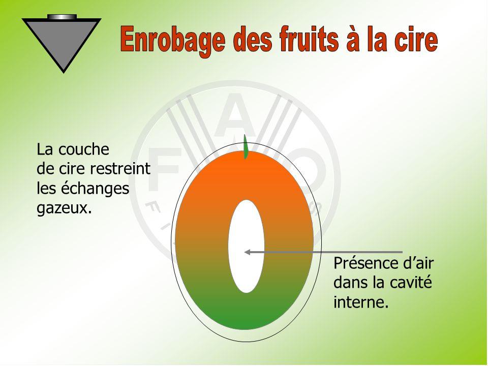 Enrobage des fruits à la cire