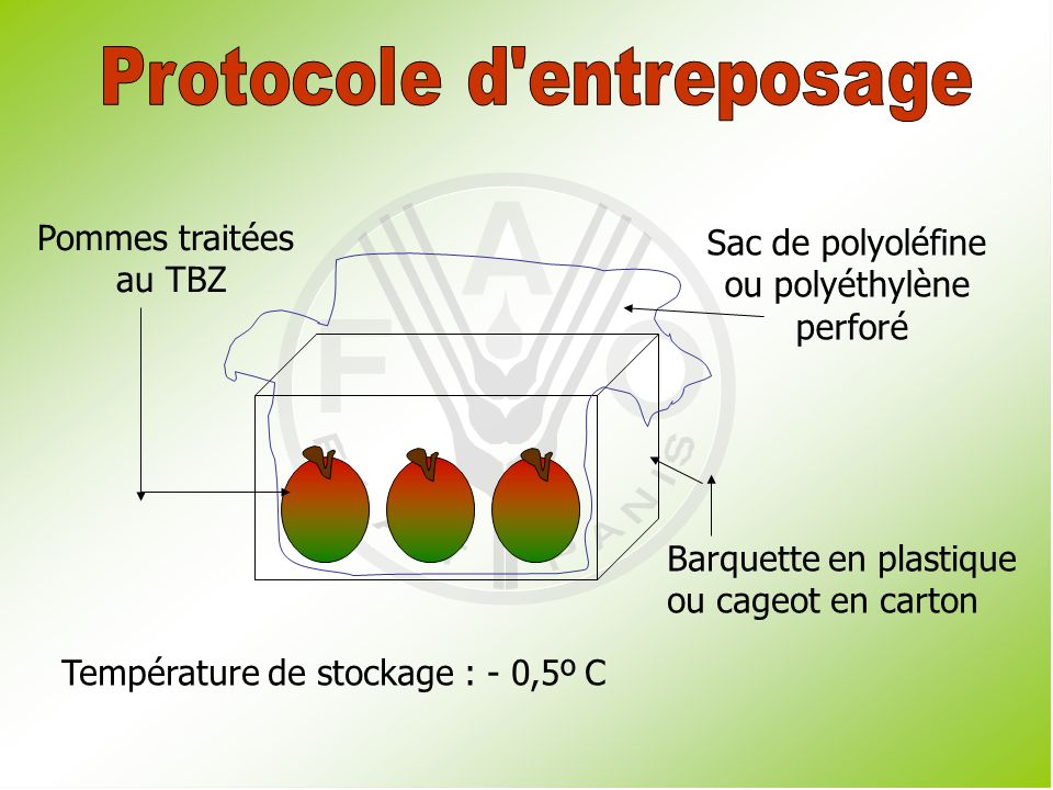 Protocole d entreposage
