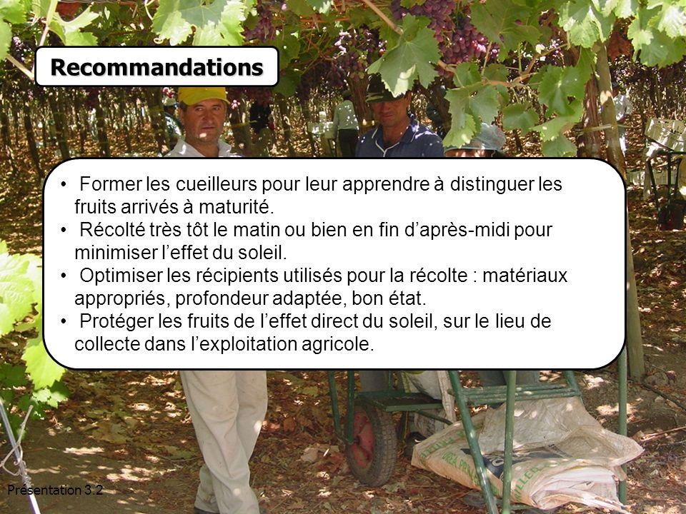 Recommandations Former les cueilleurs pour leur apprendre à distinguer les fruits arrivés à maturité.