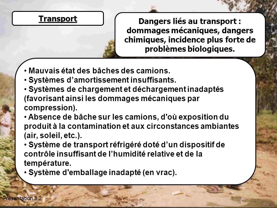 Dangers liés au transport :