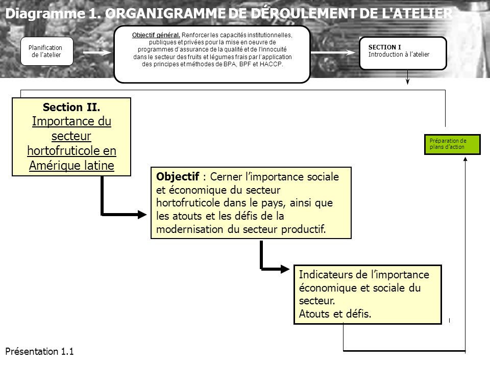 Section II. Importance du secteur hortofruticole en Amérique latine