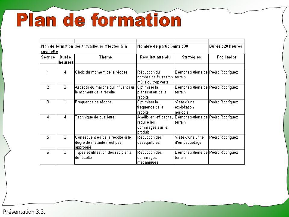 Plan de formation Présentation 3.3.
