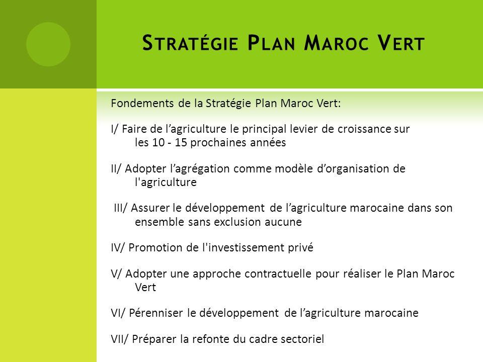 Stratégie Plan Maroc Vert