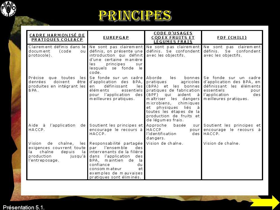 Principes Présentation 5.1.
