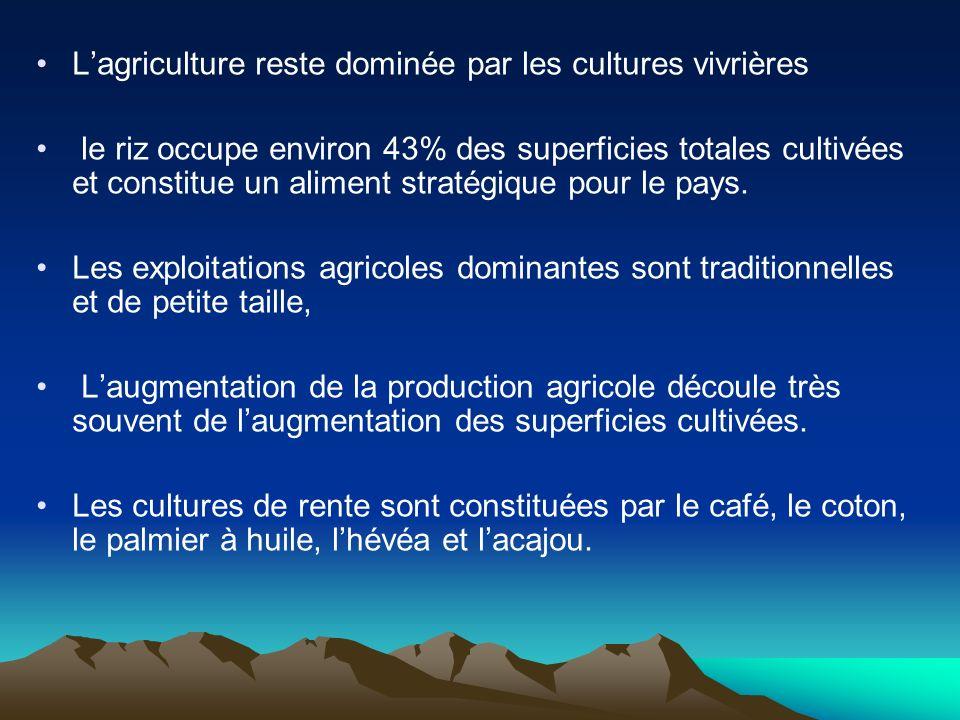L'agriculture reste dominée par les cultures vivrières