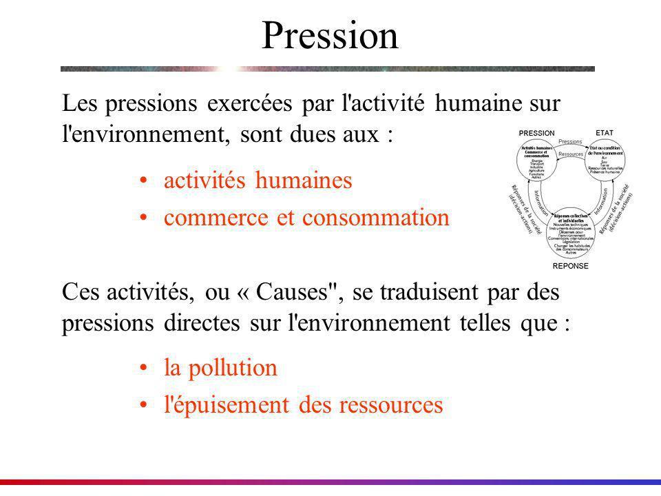 Pression Les pressions exercées par l activité humaine sur l environnement, sont dues aux : activités humaines.