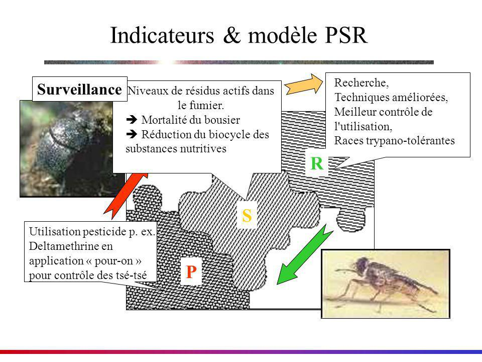 Indicateurs & modèle PSR