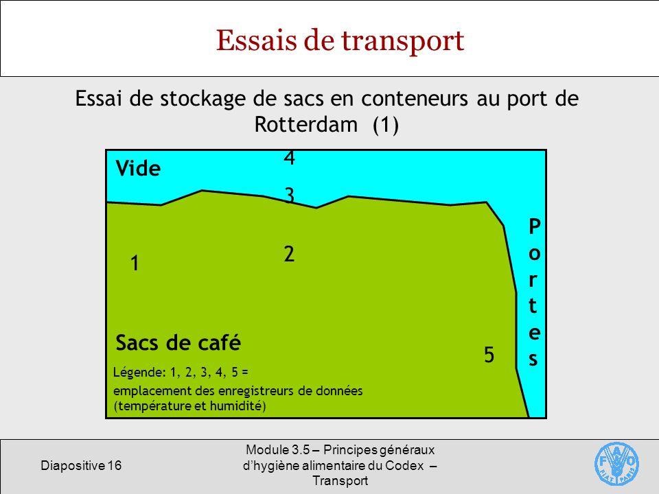 Essai de stockage de sacs en conteneurs au port de Rotterdam (1)