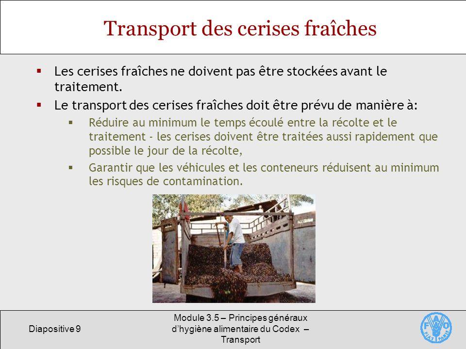 Transport des cerises fraîches