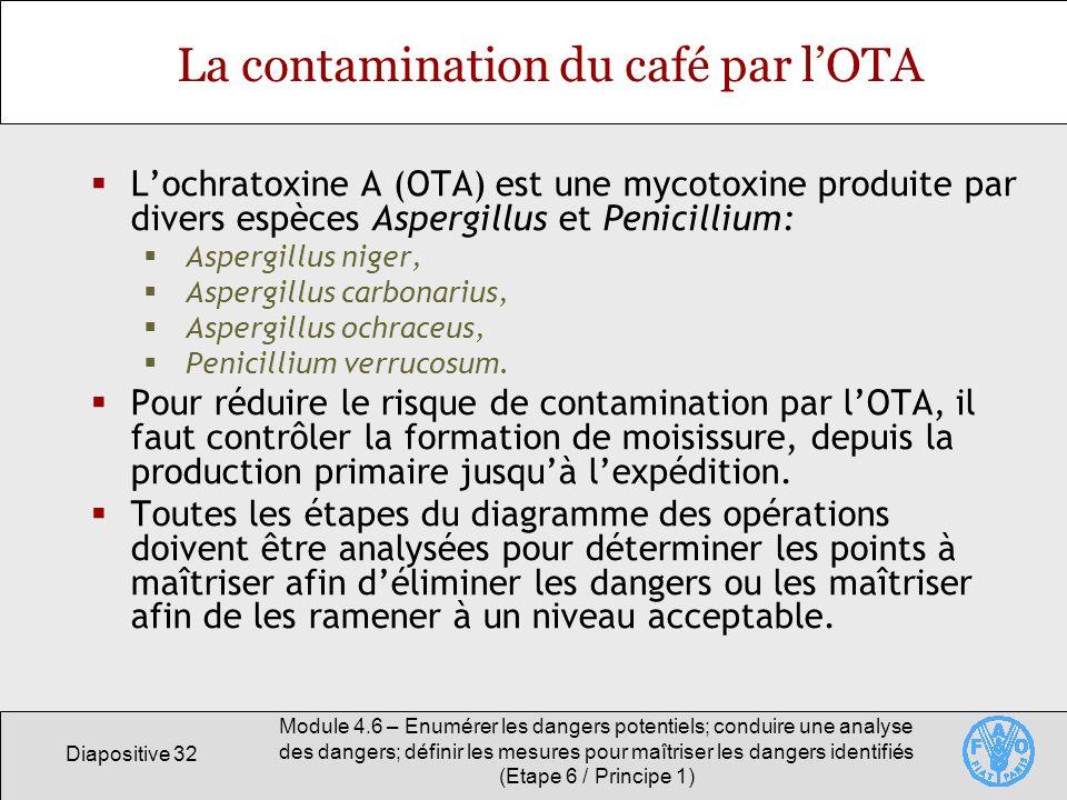 La contamination du café par l'OTA
